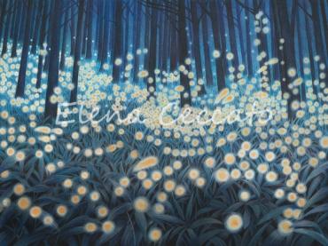 Il bosco delle lucciole © Elena Ceccato 2018